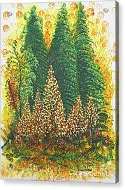 Christmas Is Coming Acrylic Print