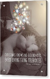 Christmas Nap Quote Acrylic Print by JAMART Photography