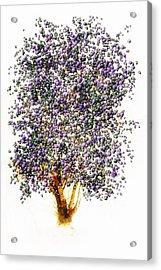 Christmas Spirit Acrylic Print by John Stuart Webbstock