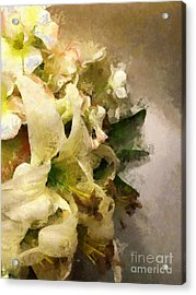 Christmas White Flowers Acrylic Print