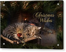 Acrylic Print featuring the photograph Christmas Wishes by Robin-Lee Vieira
