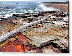 Chroma Reid State Park Acrylic Print by Olivier Le Queinec