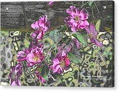 Chrome Roses 2666 Acrylic Print
