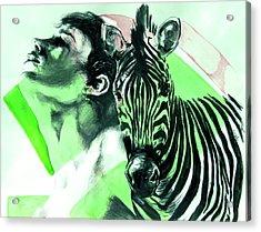 Chronickles Of Zebra Boy   Acrylic Print
