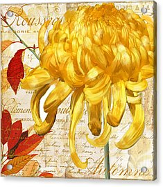 Chrysanthemes Acrylic Print by Mindy Sommers