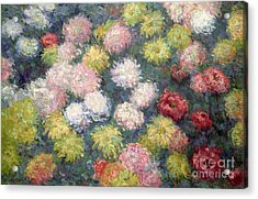 Chrysanthemums Acrylic Print by Claude Monet