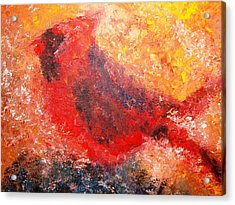 Chubby Cardinal Acrylic Print