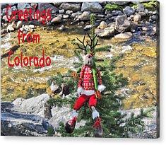 Chumps Christmas Acrylic Print