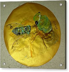 Cicada On Gold Acrylic Print