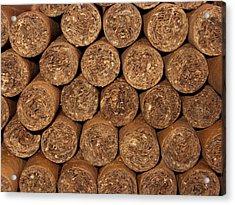 Cigars 262 Acrylic Print by Michael Fryd
