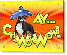 Cinco De Mayo - Ay Chiwowwow Acrylic Print by Renae Laughner