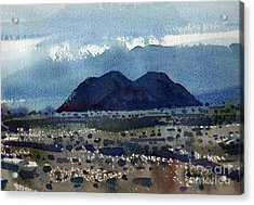 Cinder Cone Death Valley Acrylic Print by Donald Maier