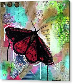 Acrylic Print featuring the mixed media Cinnabar Butterly by Lisa McKinney