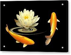 Circle Of Life - Koi Carp With Water Lily Acrylic Print by Gill Billington