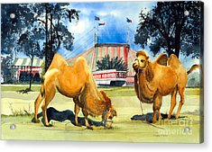 Acrylic Print featuring the painting Circo Magico by Douglas Teller