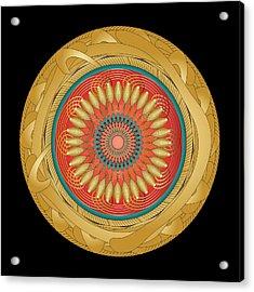 Circularity No 1566 Acrylic Print