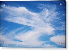Cirrus Clouds Acrylic Print by Steve Ohlsen