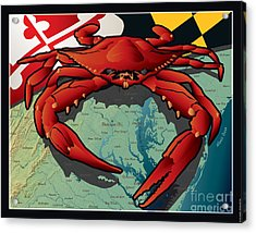 Citizen Crab Of Maryland Acrylic Print