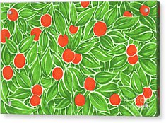Citrus Pattern Acrylic Print by Cindy Garber Iverson