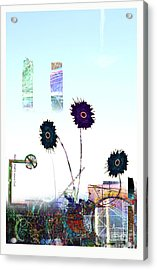 City Blooms Acrylic Print by Andy  Mercer
