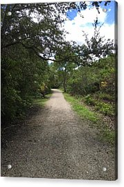 City Dirt Road Acrylic Print by Joanne Parks