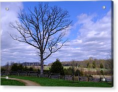 Civil War Fence And Tree With No Leaves Next In Gettysburg Penns Acrylic Print