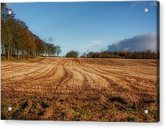 Acrylic Print featuring the photograph Clackmannanshire Countryside by Jeremy Lavender Photography