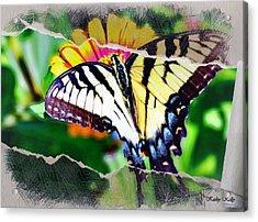 Claritin Clear Acrylic Print