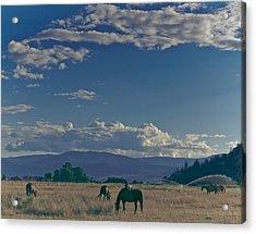 Classic Country Scene Acrylic Print