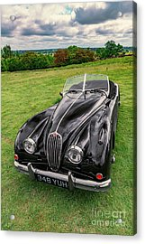 Classic Jag Acrylic Print by Adrian Evans