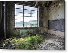 Acrylic Print featuring the mixed media Classroom Garden by Terry Rowe