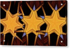 Clawed Stars  Acrylic Print by Ron Bissett