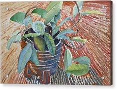 Clay Pot Acrylic Print by Ruth Kamenev