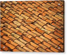 Clay Roof Tiles Acrylic Print by David Buffington