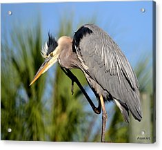 Cleaning Up Acrylic Print by Brenda Alcorn