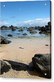 Clear Water Shore Acrylic Print by Halle Treanor