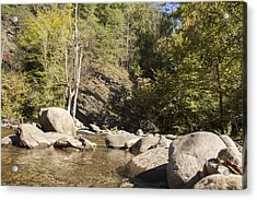Clear Water Stream Acrylic Print