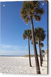 Clearwater Palms Acrylic Print