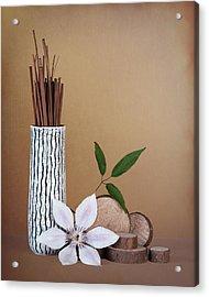 Clematis Flower Still Life Acrylic Print