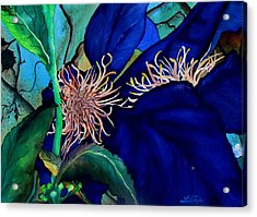 Clematis Regal In Purple And Blue Sold Acrylic Print by Lil Taylor