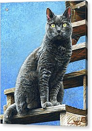 Cleo Acrylic Print by Cara Bevan