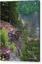 Cliff Hanger Acrylic Print by Deborah Johnson