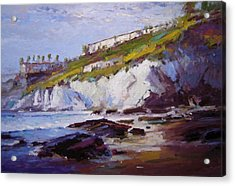 Cliffs At Pismo Beach Xx Acrylic Print