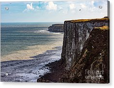 Acrylic Print featuring the photograph Cliffs Of Bempton by Anthony Baatz