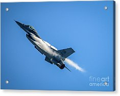 Acrylic Print featuring the photograph Climbing Falcon by Tom Claud