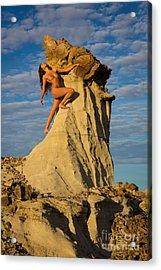 Climbing Acrylic Print by Inge Johnsson
