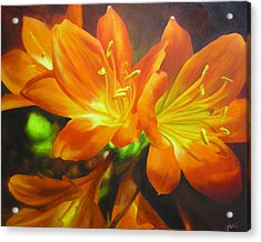 Clivias Acrylic Print by Chris Hobel