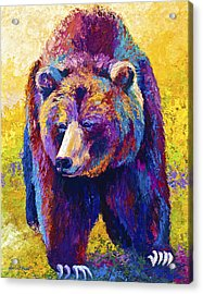 Close Encounter - Grizzly Bear Acrylic Print by Marion Rose