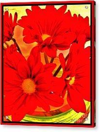 Close Up Red Gerbers Acrylic Print by Marsha Heiken