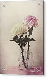Closely Acrylic Print by Priska Wettstein